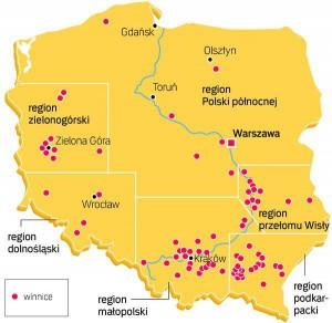 mapa polskich winnic lubimywino_pl