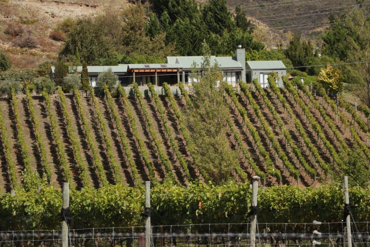 Peregrine Wines
