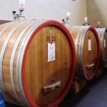 Bardolino winnica Guerrieri Rizzardi nad jezorem Garda Klub WIna lubimywino.pl Folwark Stara Winiarnia