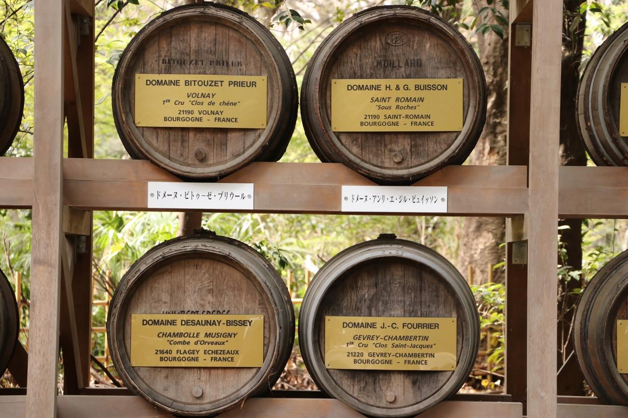 Wino z Burgundii w sercu Tokio