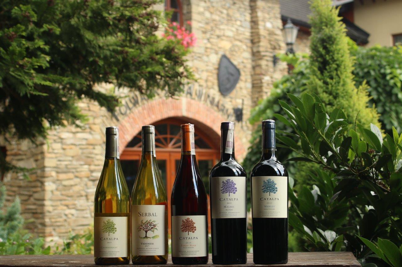 Degustacja win z Argentyny